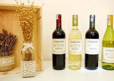 Rượu vang Ý loại nào ngon nhất?
