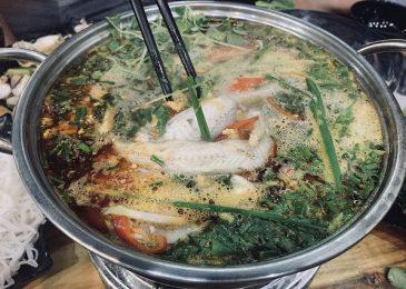 Các món ăn ngon nên thử khi du lịch Quảng Bình tháng 11